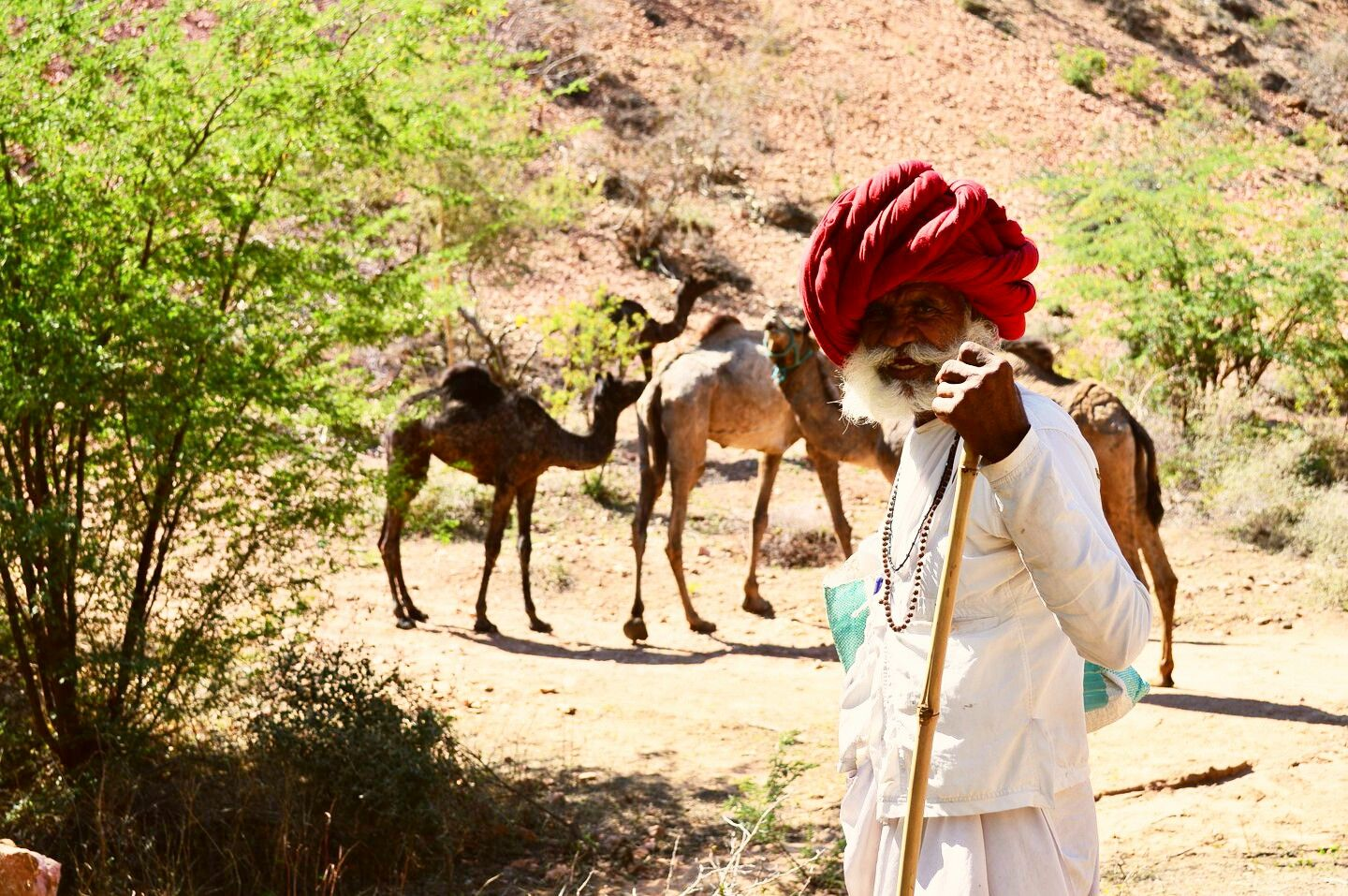 Explore-Rajasthan-by-Grand-Sunny-Routes